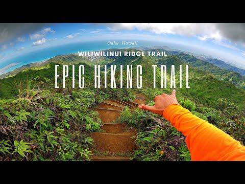 Epic Hiking Trail in Oahu, Hawaii│Wiliwilinui Ridge [FULL GUIDE] Best Trail