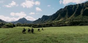 Guided horseback riding tour of the Kualoa Ranch