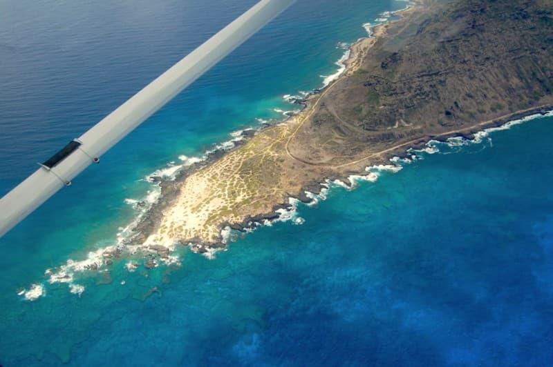 Coral at Ka'ena Point
