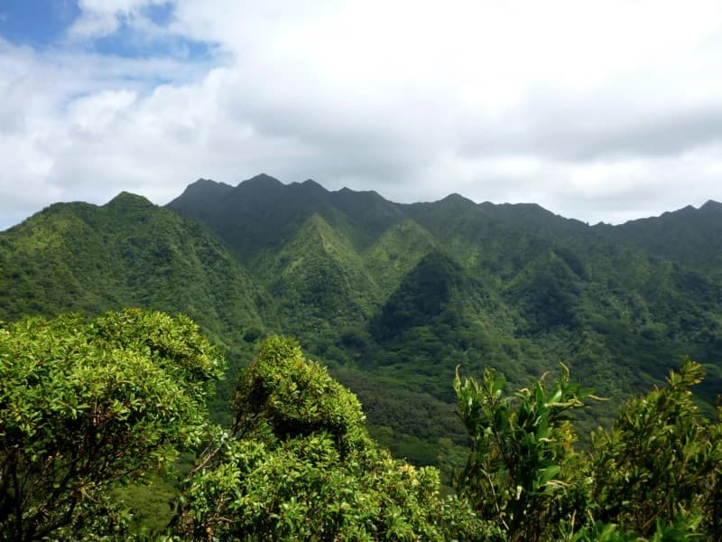 Manoa Valley and Mount Olympus